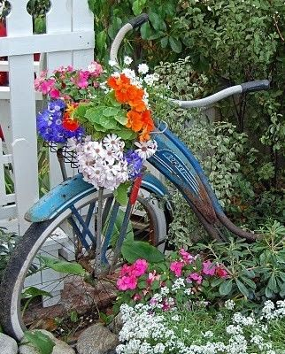 Park an old bicycle in your garden, let the vines grow all over it, and plant the basket on the front with a lot of colorful flowers.