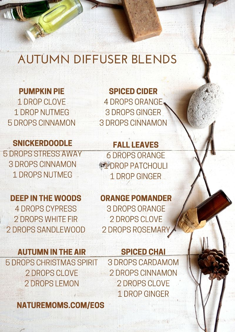 Essential Oils Blends Perfect For Fall Essential Oils Essential