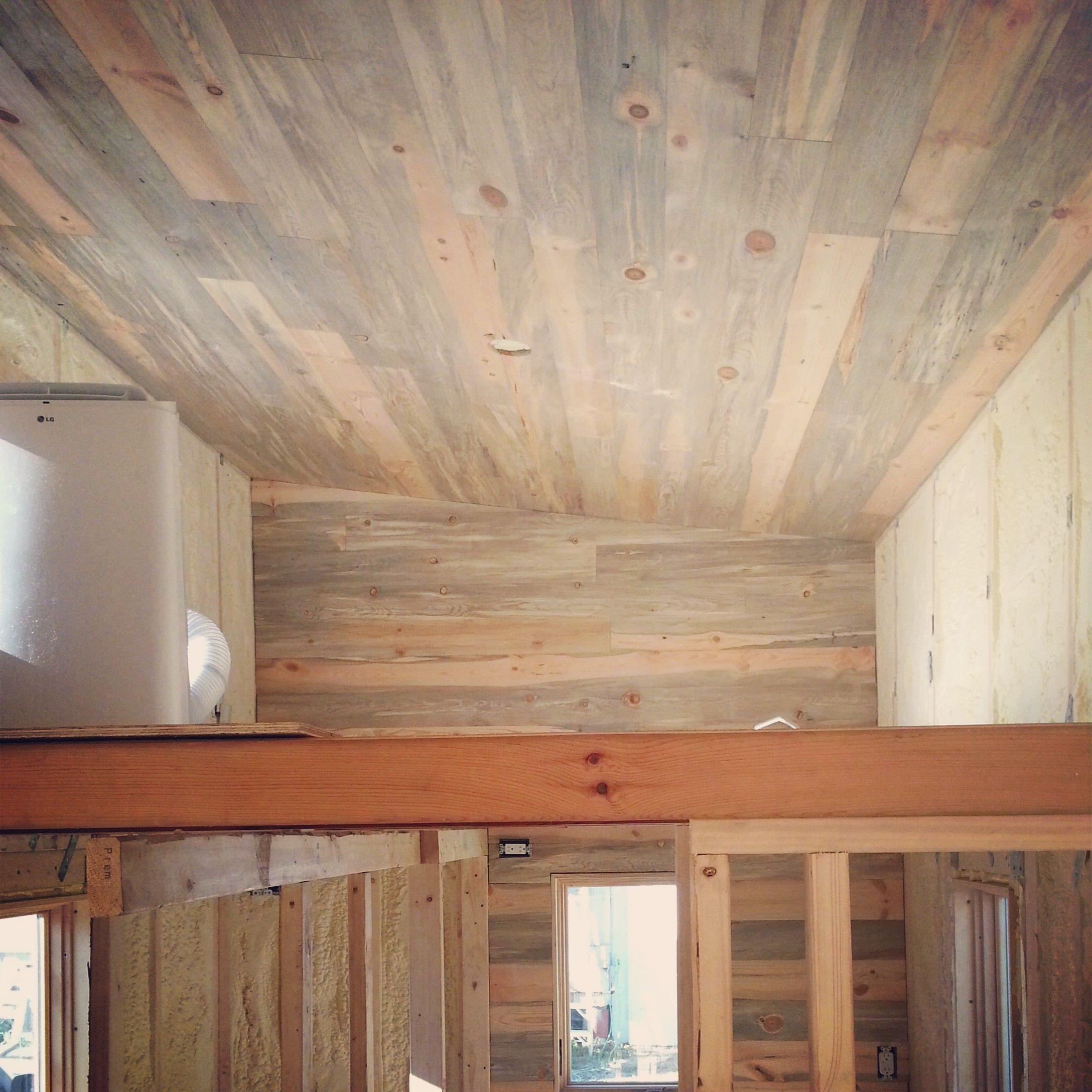 Beautiful Blue Stain Beetle Kill Pine Ceiling And