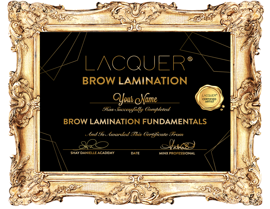 LACQUER Brow Lamination System FREE COURSE & CERTIFICATE, 2020
