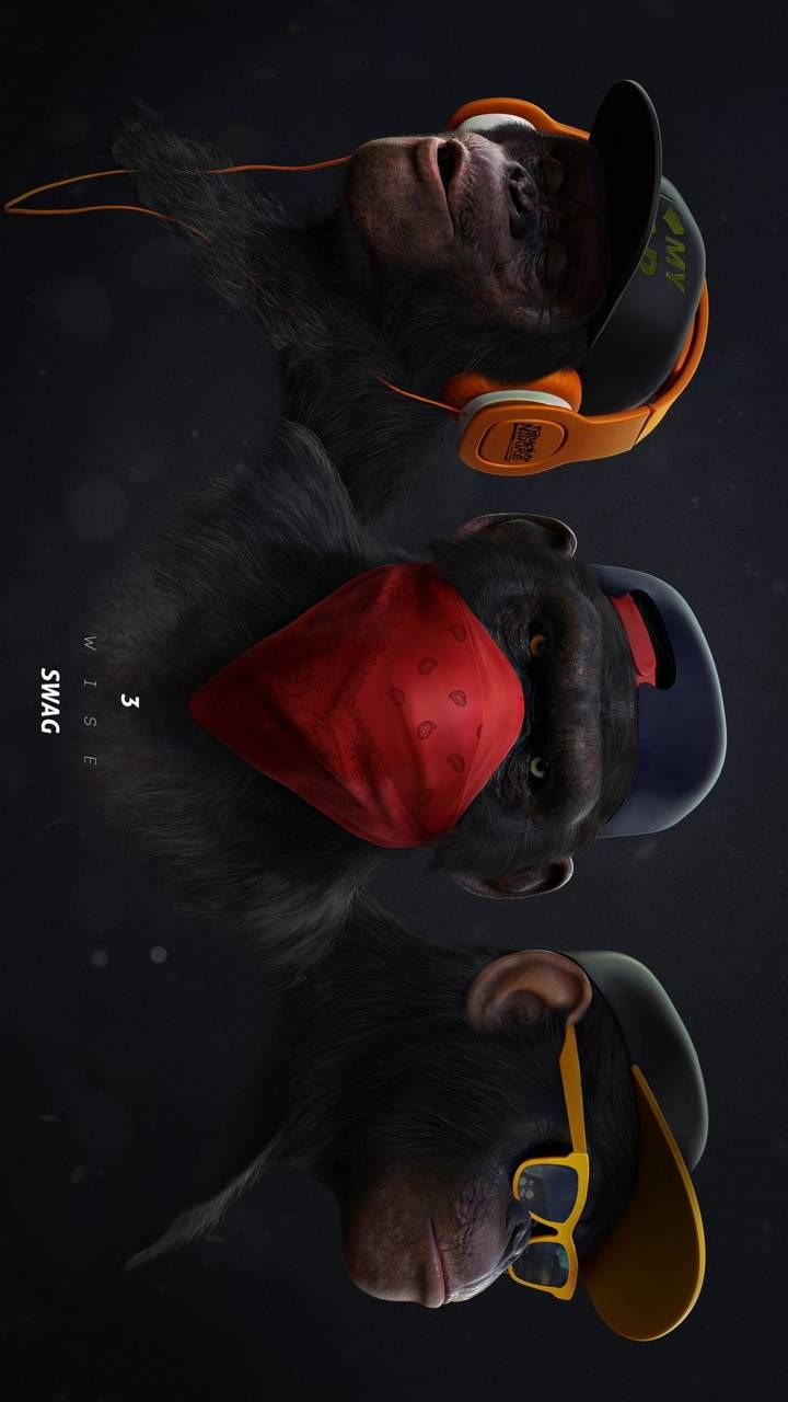 monkey swag2 wallpaper by anddyy00 - f4 - Free on ZEDGE™
