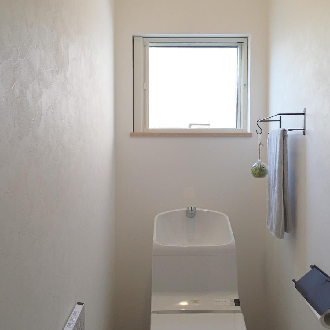 1fトイレ 塗り壁調のクロス 空気をきれいにするエアプラントをぶらり トイレ 壁紙 エアプラント マイホーム 新築 新築一戸建て 壁紙 デザイン ハウス