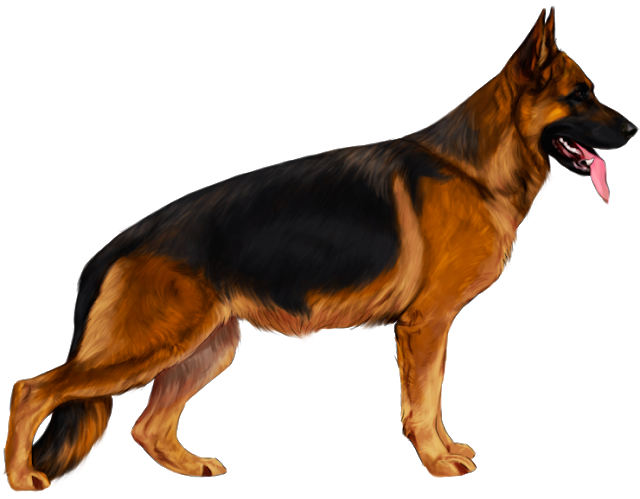 German Shepherd Logo Design Dog Png Image Dog Design German Shepherd Dog Photos