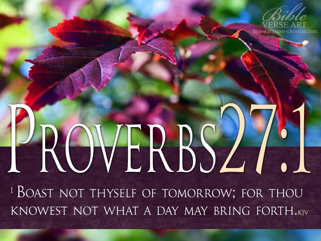 """Proverbs 27:1 (1611 KJV !!!!) """" BOAST NOT thyself of tomorrow; for thou knowest not what a day may bring forth."""""""