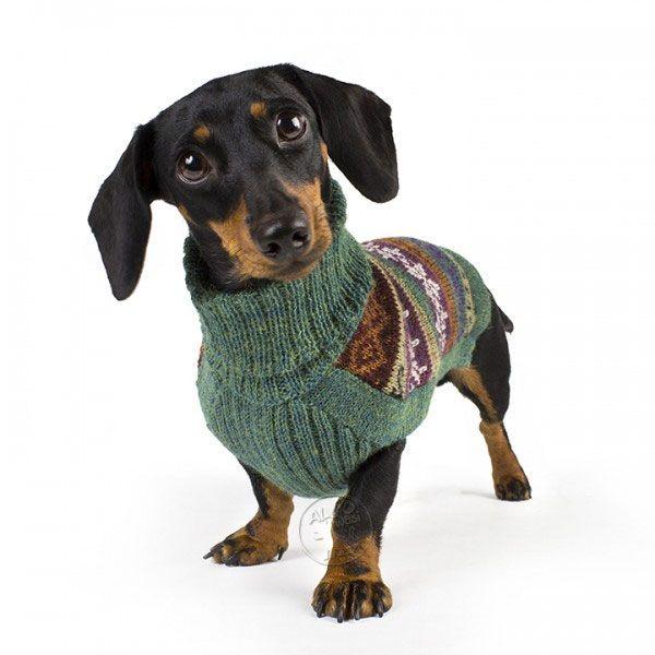 Gentle Cloud Handknit Alpaca Dog Sweater -- those eyes...