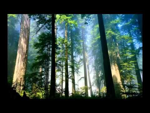 Subscribe for more! Extracted from Abraham Hicks Washington 2016 04 09 workshop! Help me make more videos by supporting me, any donation will help me big! @ ...