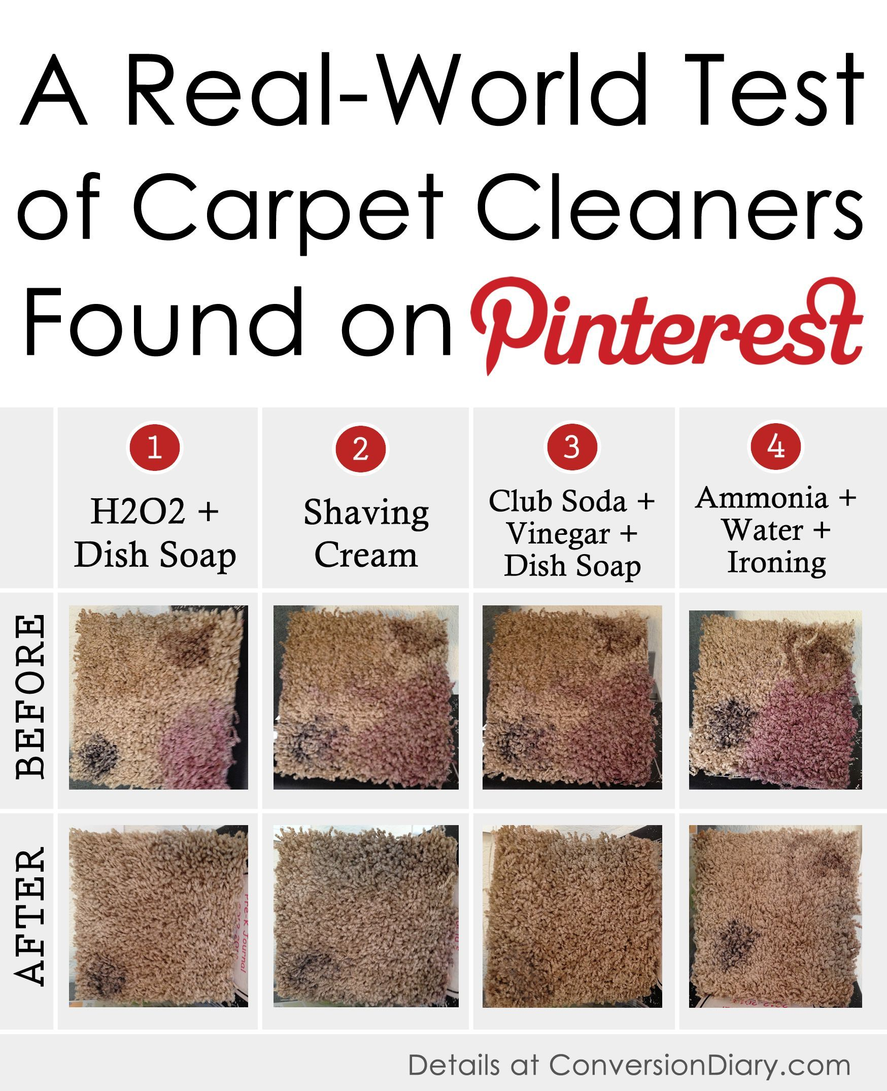 We interrupt this blog to bring you the ultimate Pinterest carpet-cleaning challenge