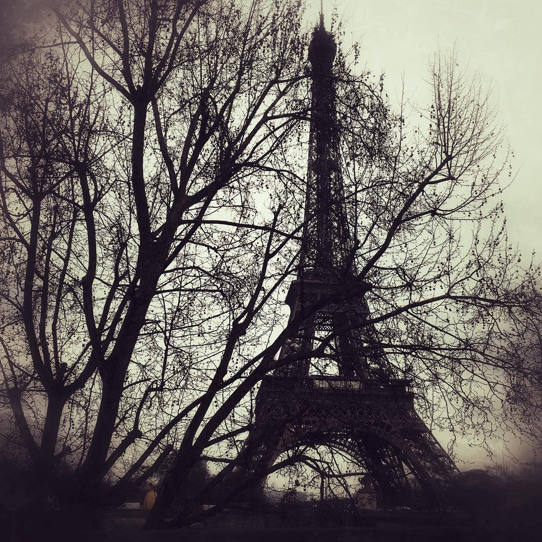 هذا هو الحب إن ي أحبك حين أموت وحين أح بك أشعر أني أموت Instagram Posts Instagram Eiffel Tower