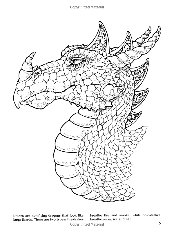 74 Large Dragon Coloring Book Free Images