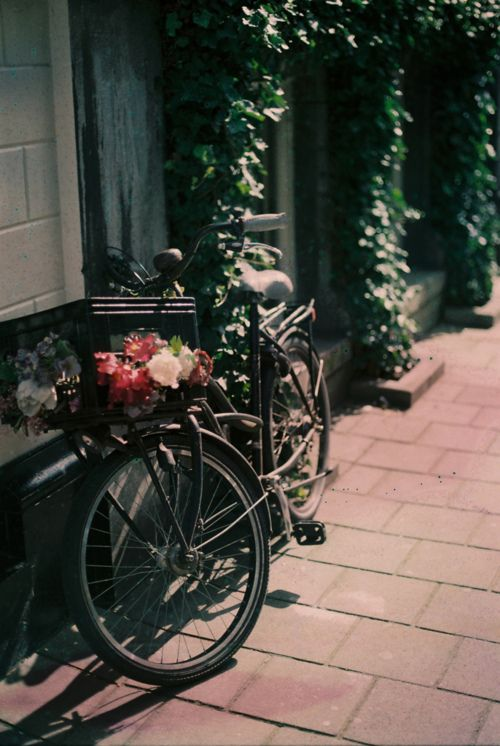 bike #needspringvisions