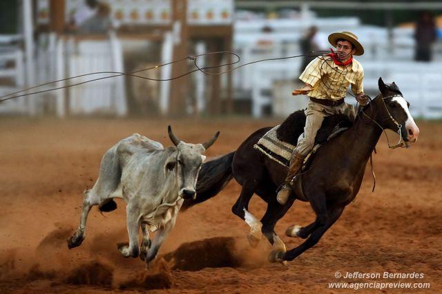 Tiro de laço é uma forma de competição a cavalo característica do Rio Grande do Sul. Nesta prova, o ginete tem o espaço de 100 metros para laçar um novilho que tenta fugir. São importantes para o bom desempenho a qualidade da montaria bem como a habilidade do laçador.