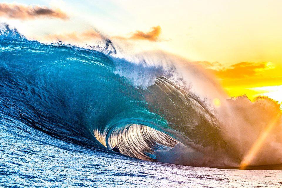 #wave #surfing