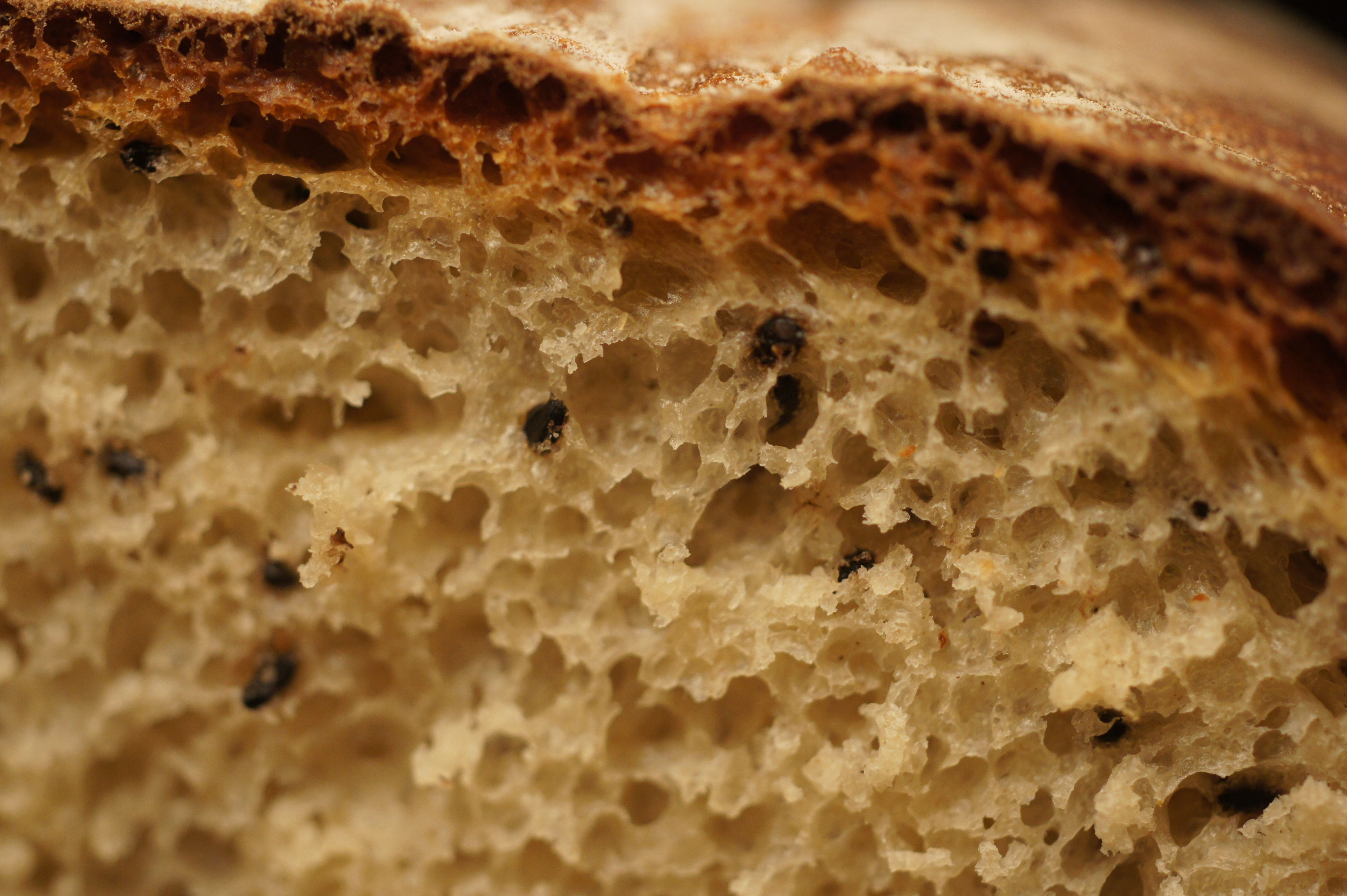 my Bread with sesame oil and seeds (black)