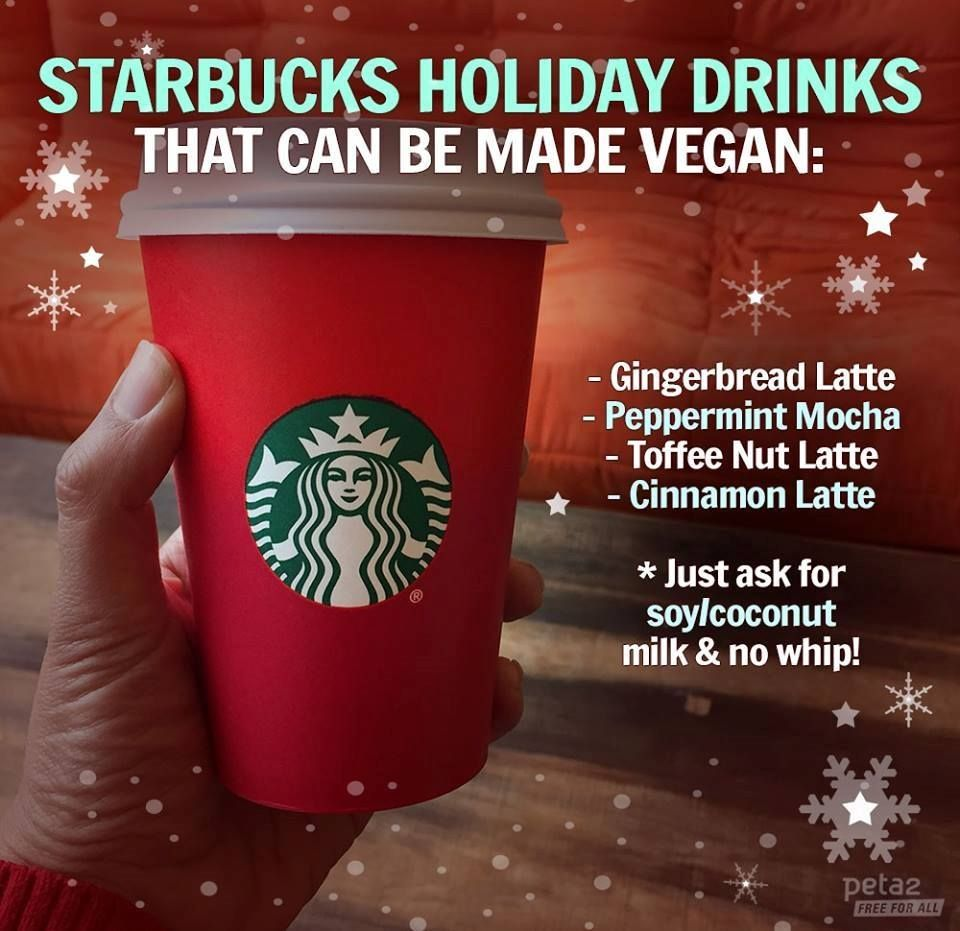How To Order Vegan Drinks At Starbucks Vegan Starbucks Drinks Vegan Starbucks Starbucks Holiday Drinks