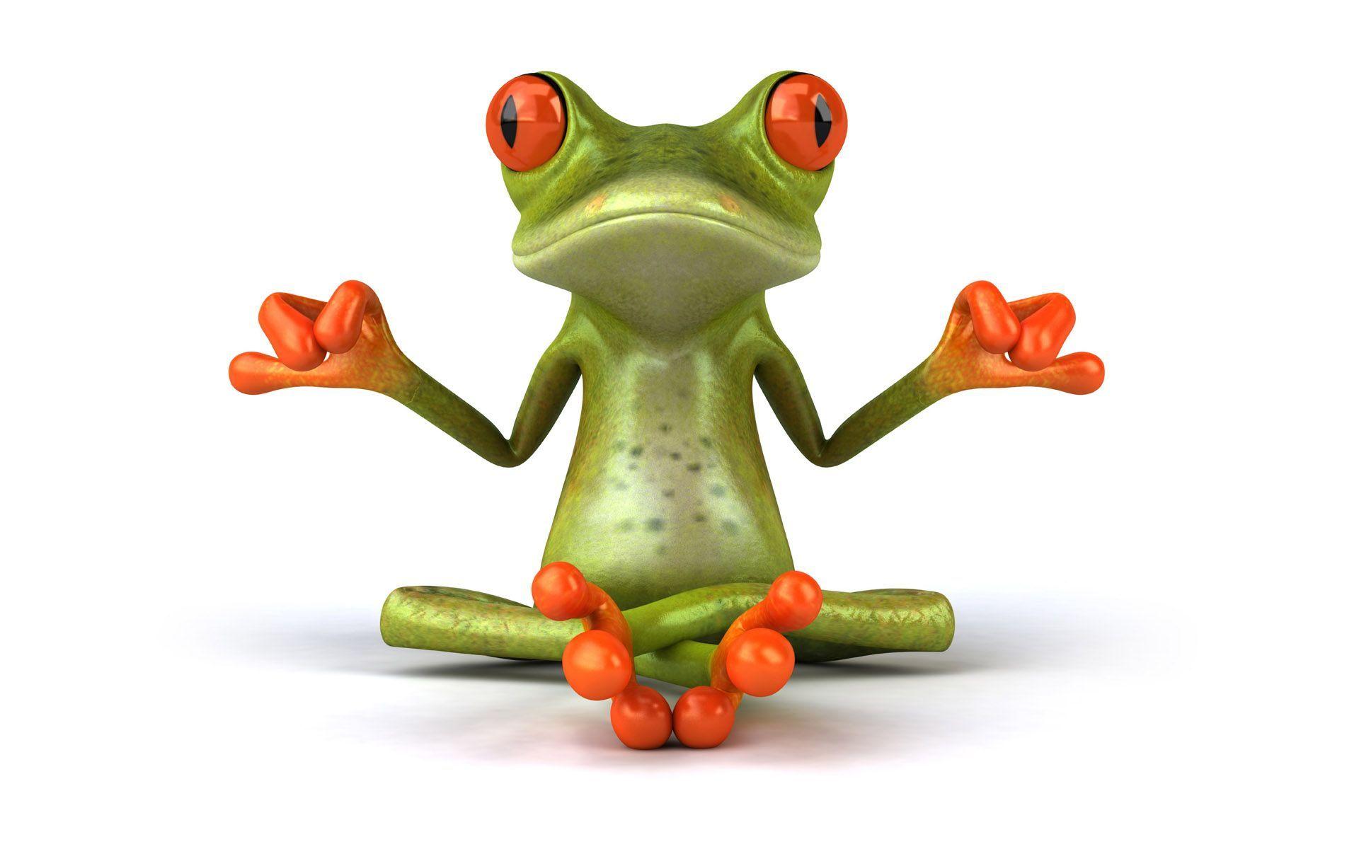 Chú ếch ngồi với một tư thế độc nhất vô nhị
