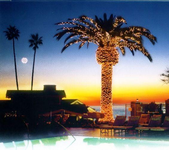 Illuminated Palm Tree At Montage Resort Laguna Beach Design By Chris Karl