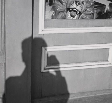 Lion and Shadow - Andre Kertesz