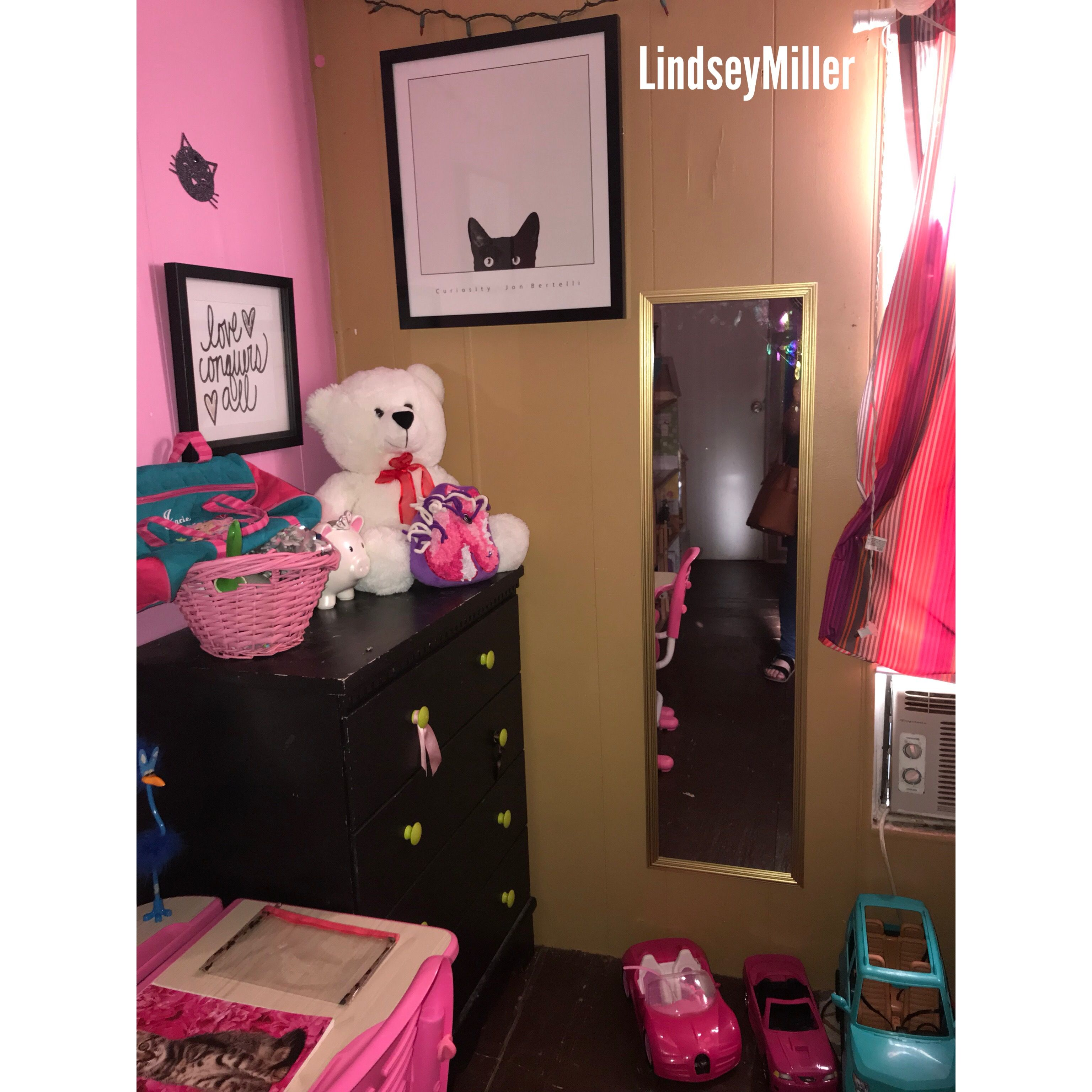 Cat themed bed room cat theme theme room