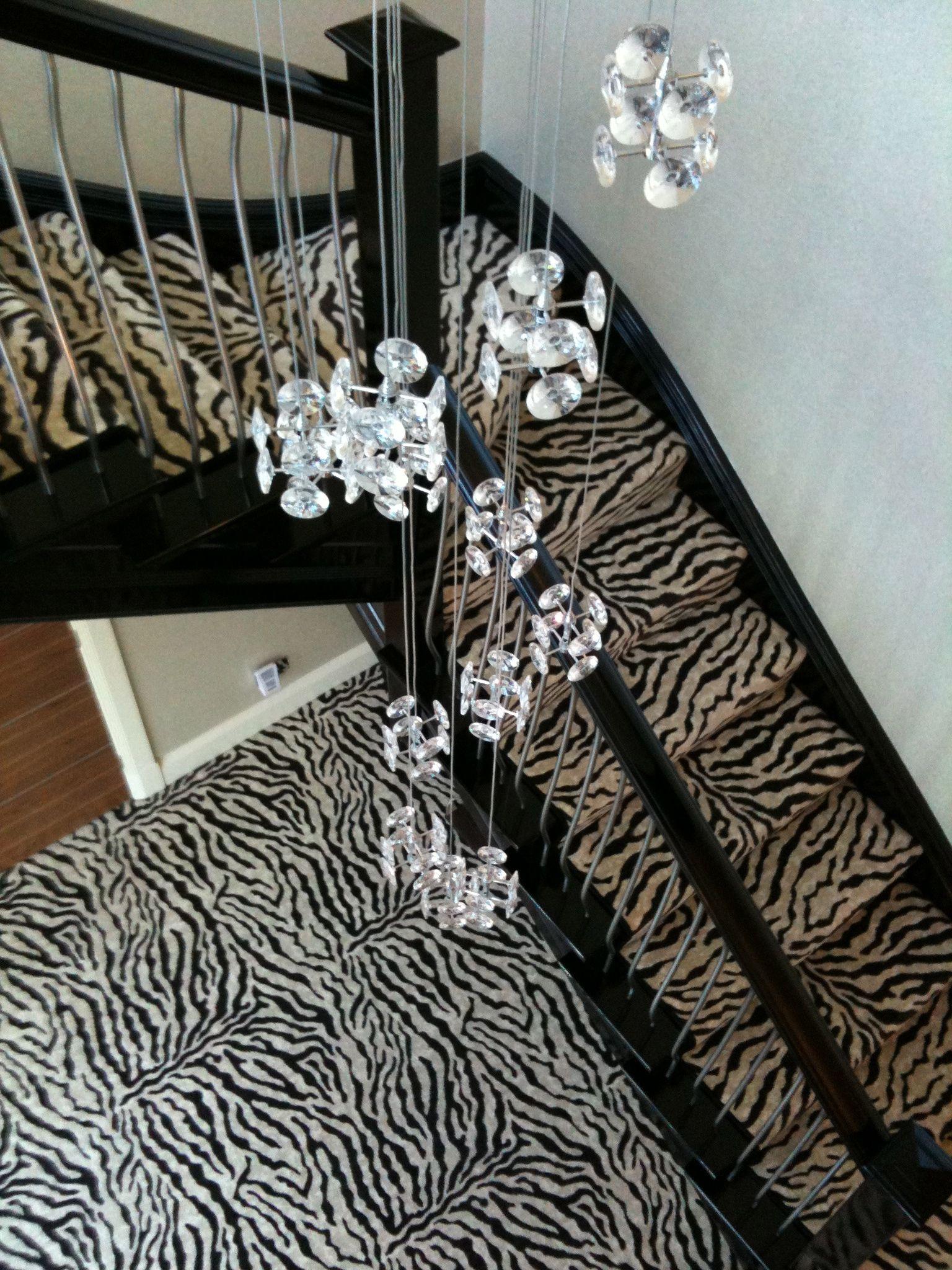 Best Zebra Print Carpet 3 66M Zebra Print Carpet Printed 400 x 300