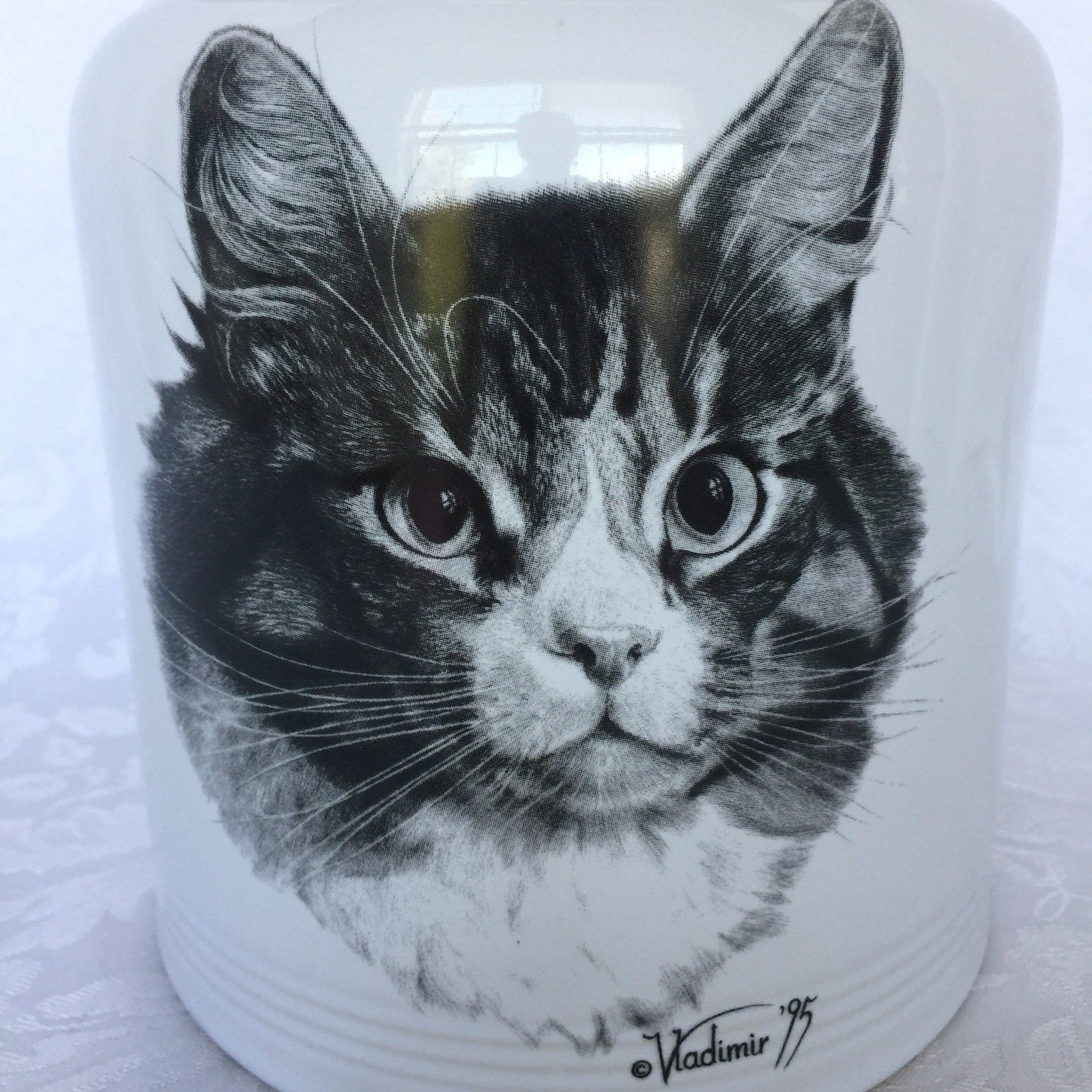 Cookie Jar Maine Interesting Rosalinde Vladimir Tzenov Cat Maine Coon Canister Treat Cookie Jar Review