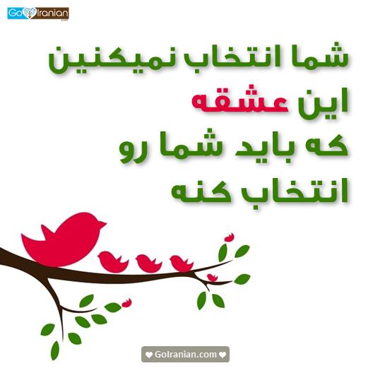 saudi arabia dating customs