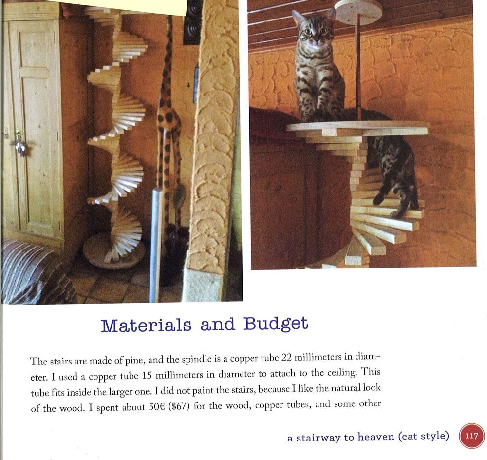 Spiral Cat Stair from Catification by Jackson Galaxy Cat