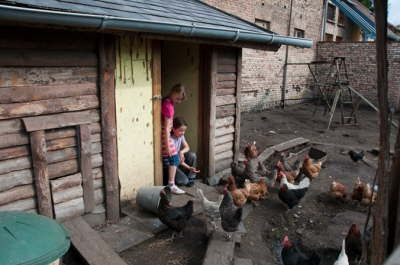 Storchenhof paretz  Kinderbauernhof mit Hof und Scheuen/Raum im Haus zum Feiern  Super mit kleinen Kindern  Keine offenen grünen Flächen  Viele Tiere
