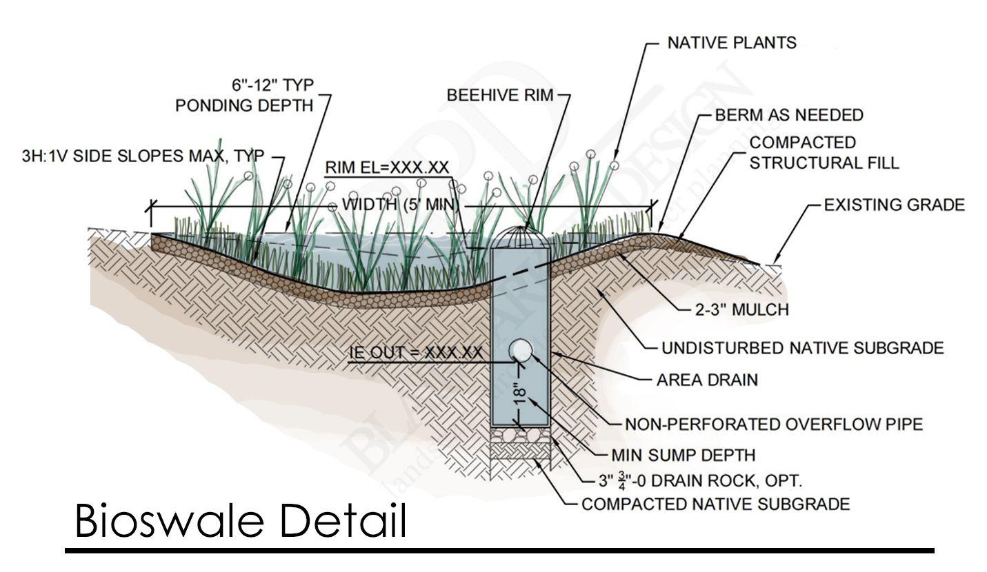 Sustainable Site Design Rain Garden Pond Design Landscape Design