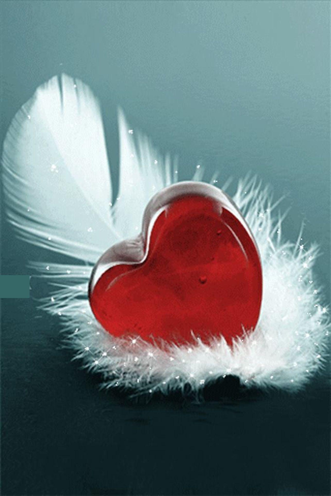 Mais Qui Est Le Poete Ilef Smaoui Plume De Poete Coeur Gif Image Coeur Coeur En Photo
