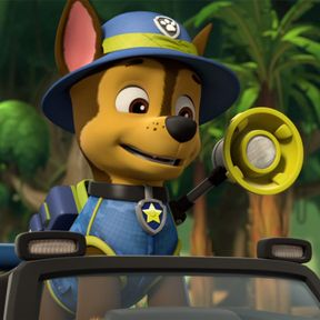 Quatang Gallery- Join The Paw Patrol In Adventure Bay Through Episodes Games Video Clips And More Learn Problem Solving Skills With Paw Patrol Full Episodes Paw Patrol Paw