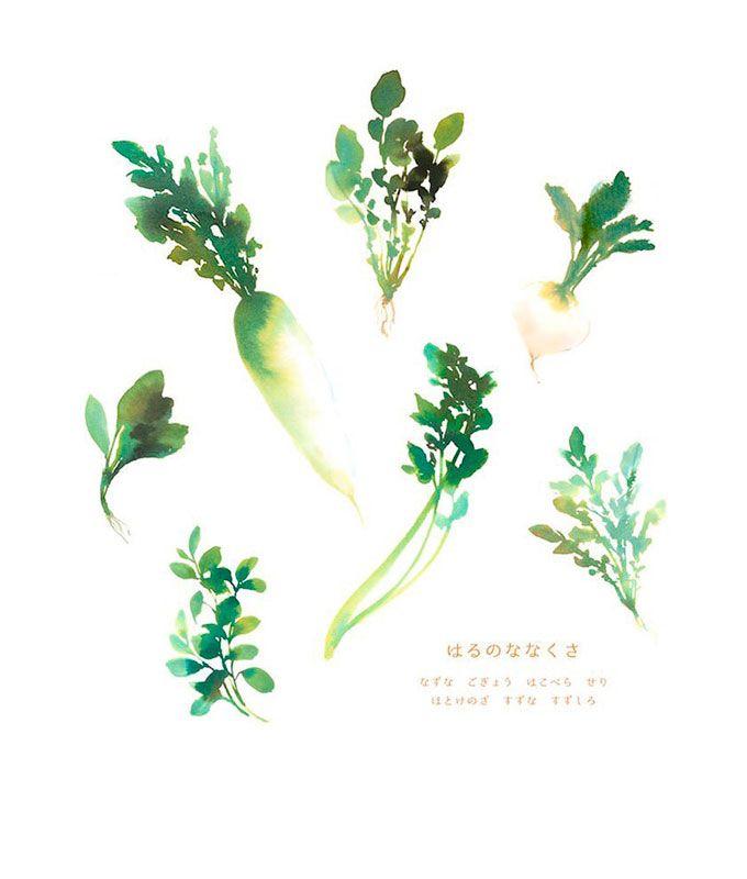 草花スケッチ/watercolor,illustration,vegetables,野菜,七草