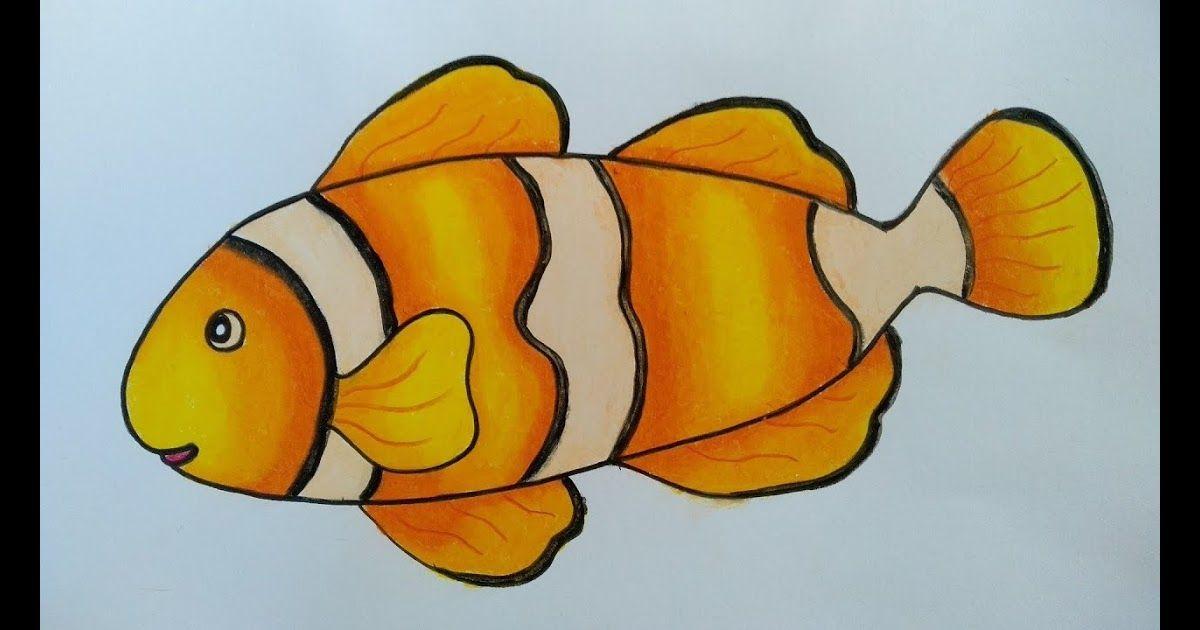 Cara Menggambar Dan Mewarnai Ikan Nemo Untuk Anak Tk Drawing For