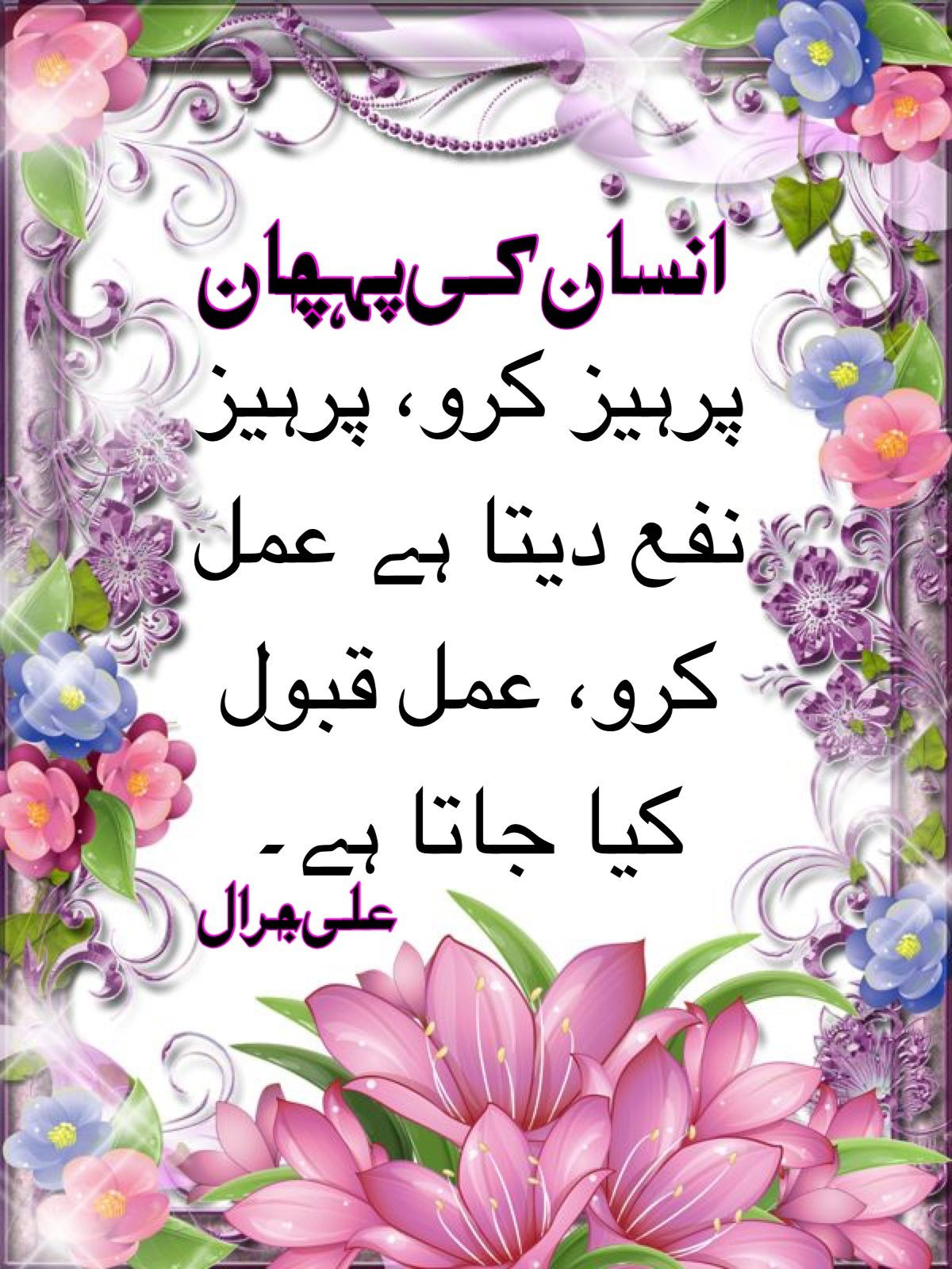 Pin by InSaN Ki PehChAN on Urdu Quotes (With images) Lei