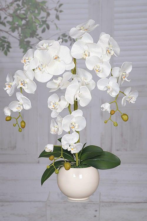 Storczyk Sztuczny Kwiat Sztuczne Storczyki Kwiaty Orchid Cake Orchids Decor