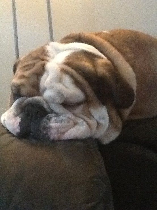 So many wrinkles