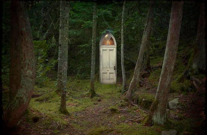 A secret door in the woods. Foreste