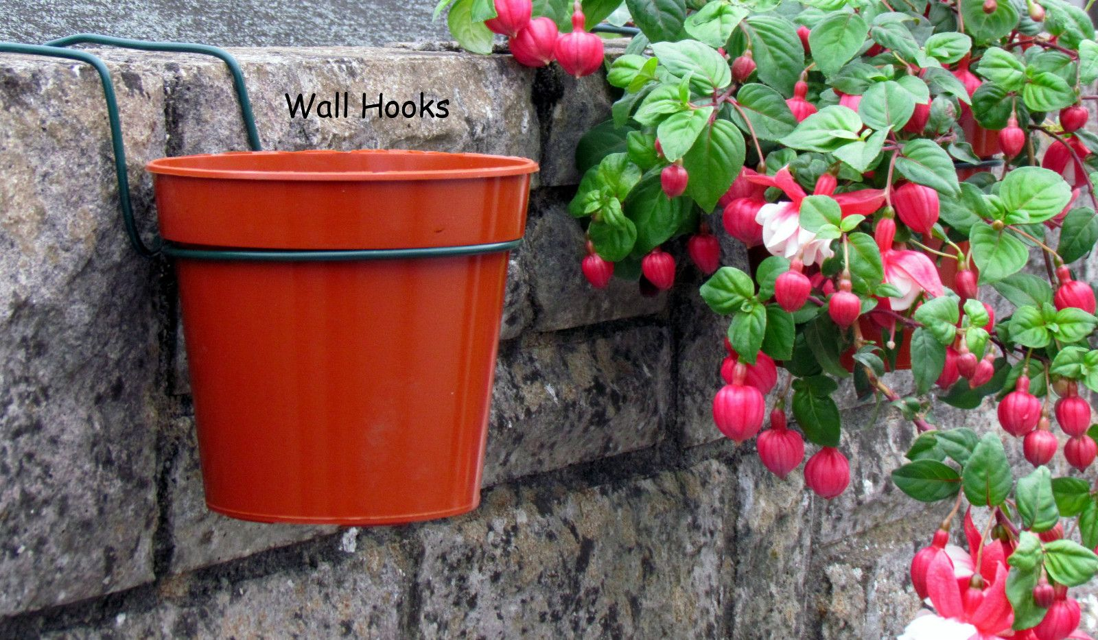 Plant pot holders for walls. hanging bracket rings for 6\