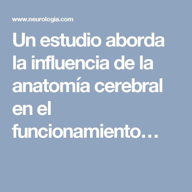 Un estudio aborda la influencia de la anatomía cerebral en el ...