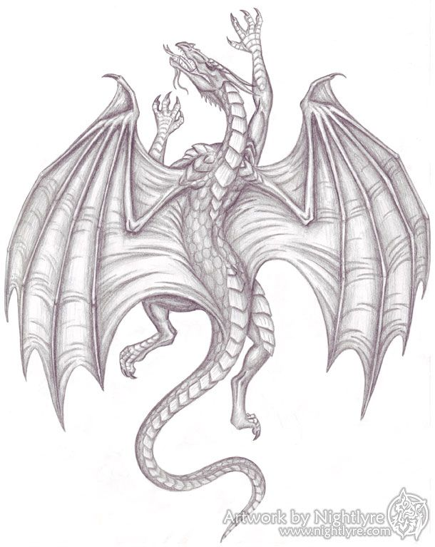 Photo of Climbing Dragon – 2007 by Nightlyre on DeviantArt
