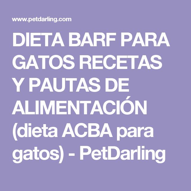 DIETA BARF PARA GATOS RECETAS Y PAUTAS DE ALIMENTACIÓN (dieta ACBA para gatos) - PetDarling