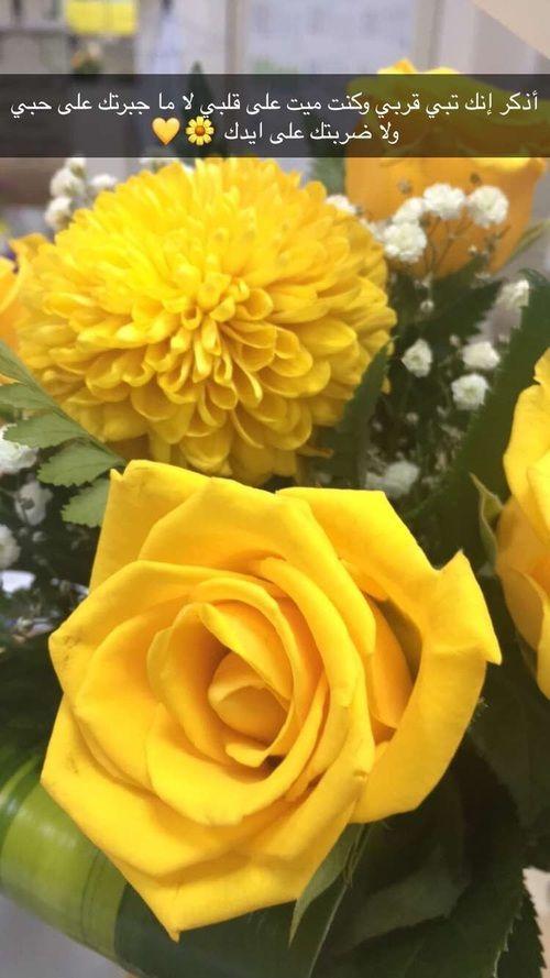 أجمل صور ورد رومانسي صور ورود حب رومانسية Flower Pictures Romantic Flowers Rose