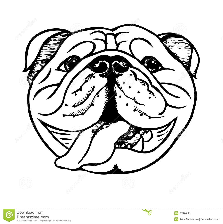 English Bulldog Black White Stock Illustrations, Vectors ... | Pups ...