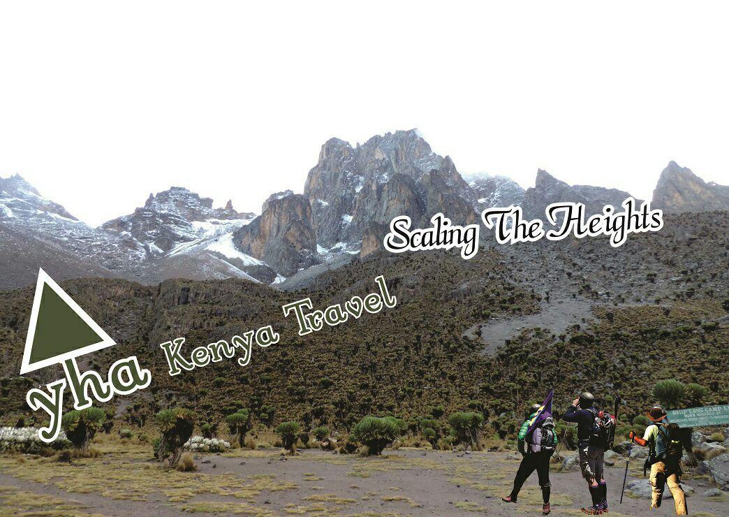 yhakenyatraveltoursandsafaris. Find perfect Mountain