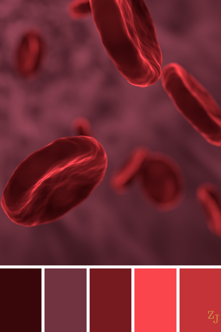 Are these red blood cells? 😂 ZJ Colour Palette 1004 # ...