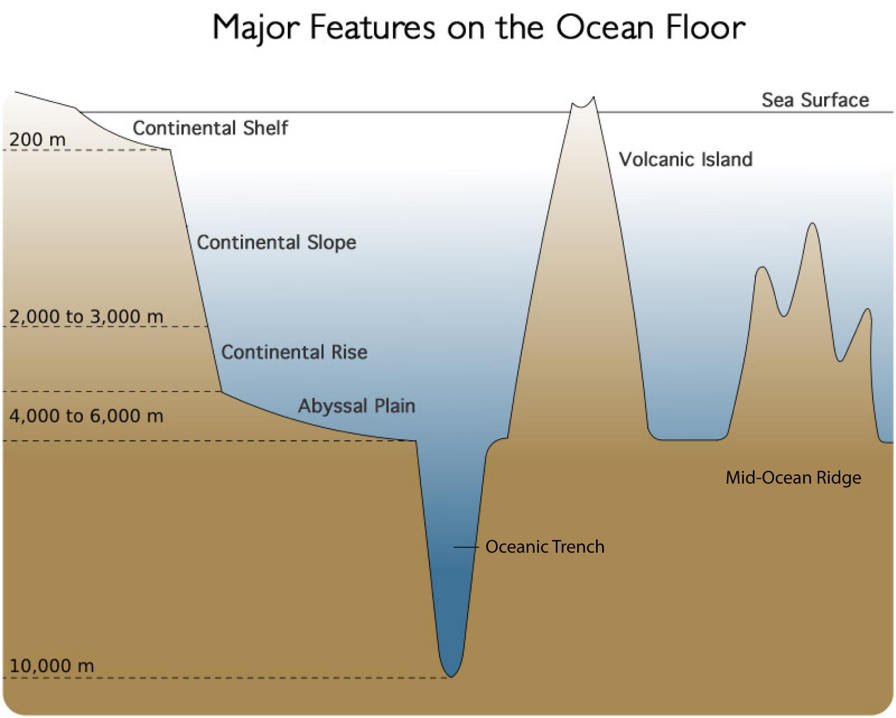 Diagram Of Ocean Floor 3d