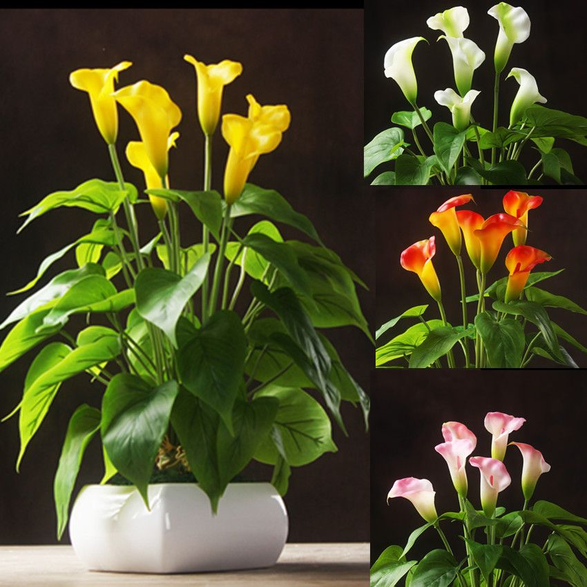 Anthurium Bouquet Anthurium 18pcs Leaves 3 Flowers Root Calla Real Touch Wedding Display Flower Artifici Artificial Flowers Anthurium Bouquet Dried Flowers