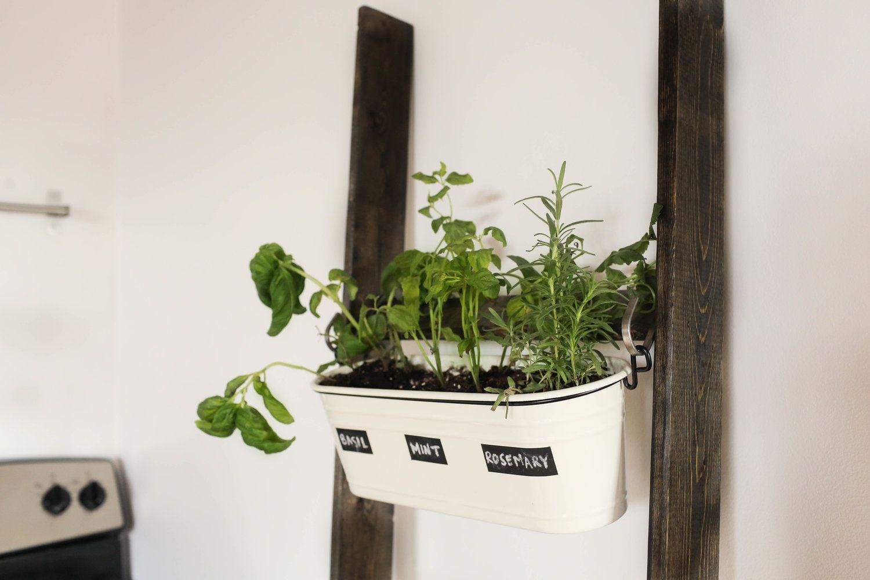 Diy Trend Kruidentuin : The newest diy decor trend ladders herbs