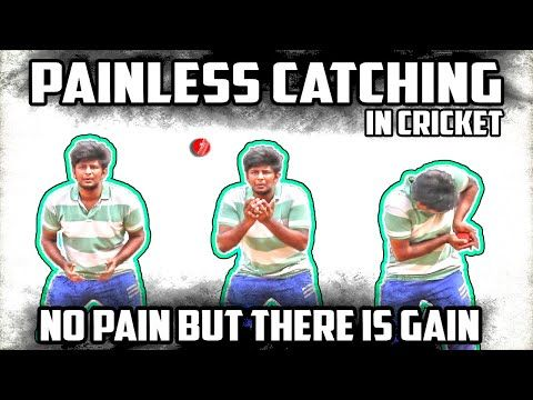 Painless Catching Technique In Cricket Cricket Fielding Tips Nothing But Cricket Http Ilovefishing Fun Painless Ca Cricket Cricket Coaching World Cricket