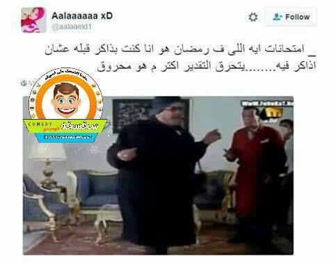 شبكة مصر اللمضه سخسخه Comedy