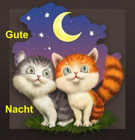 Good night Gute nacht